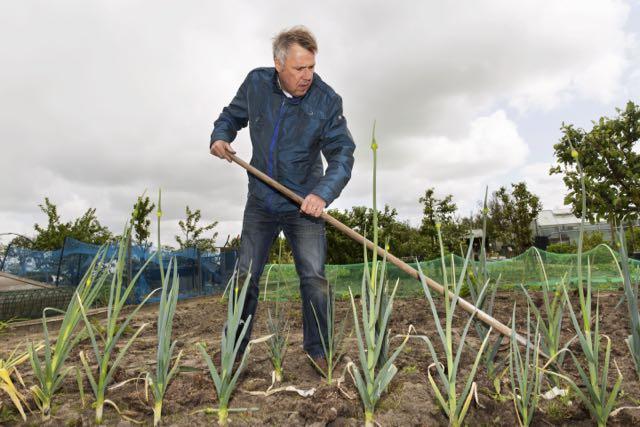 Weetjes en feiten over het tuinseizoen